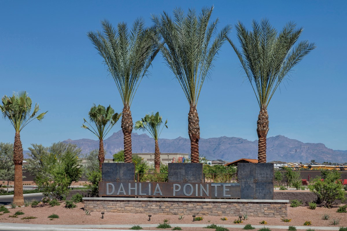 New Homes in Mesa, AZ - Dahlia Pointe Playground