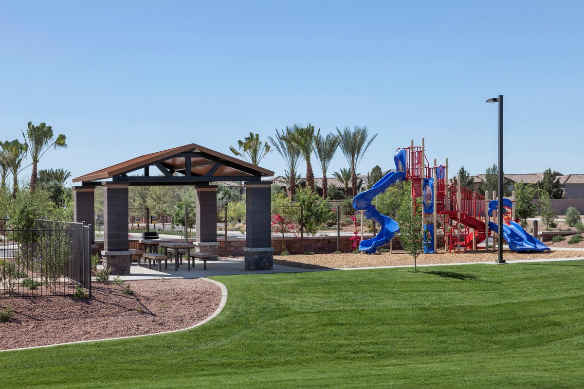 New Homes in Mesa, AZ - Dahlia Pointe Villas  Community Park