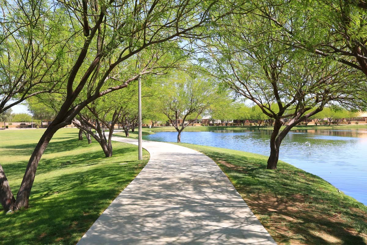 New Homes in Maricopa, AZ - Homestead Homestead Walking Paths