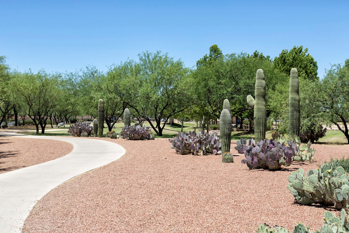 New Homes in Sahuarita, AZ - Presidio Porvenir at Rancho Sahuarita Rancho Sahuarita Parks & Trails