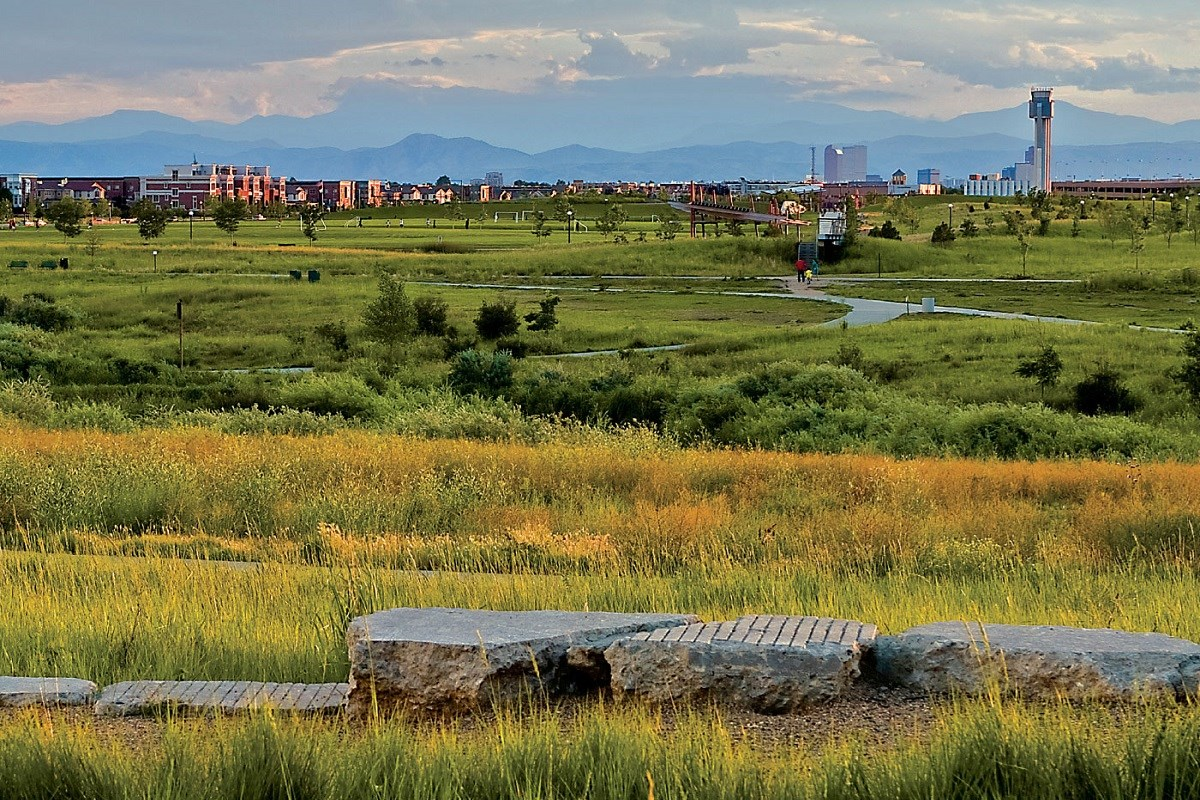 New Homes in Denver, CO - Stapleton Wildflower Collection Parks and Open Space