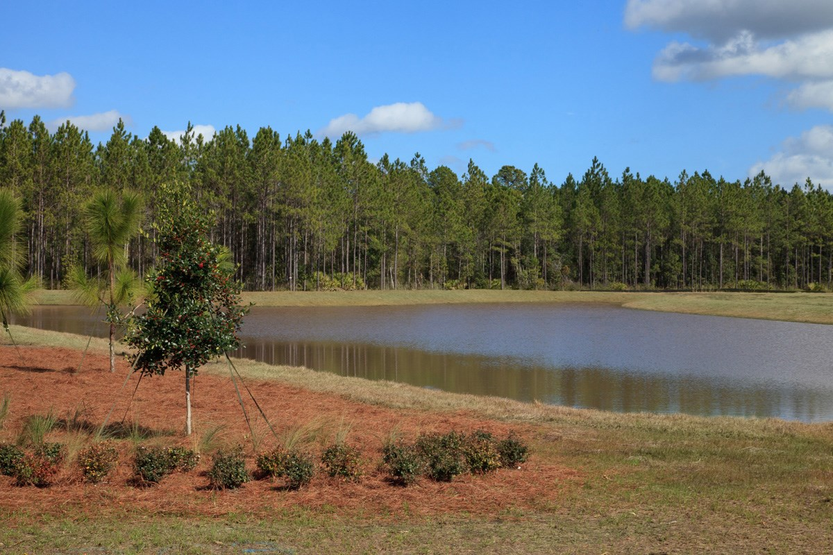 New Homes in St. Johns County, FL - Glen St. Johns Lake