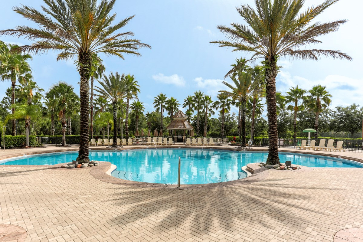 New Homes in Venice, FL - Stoneybrook at Venice Community Pool