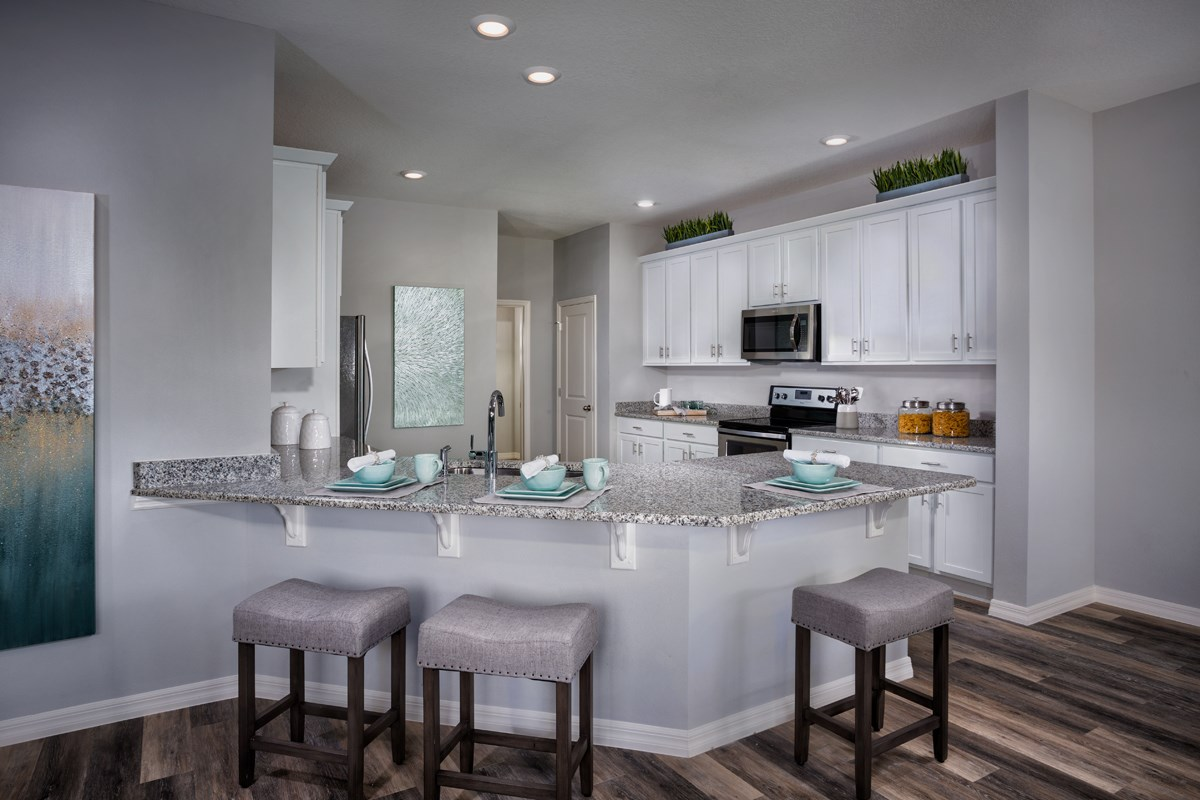 New Homes in Gibsonton, FL - Northgate Plan 2544 Kitchen