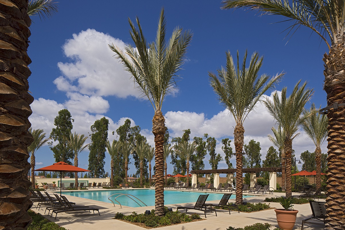 New Homes in Irvine, CA - Solano at Eastwood Village Eucalyptus Park Pool