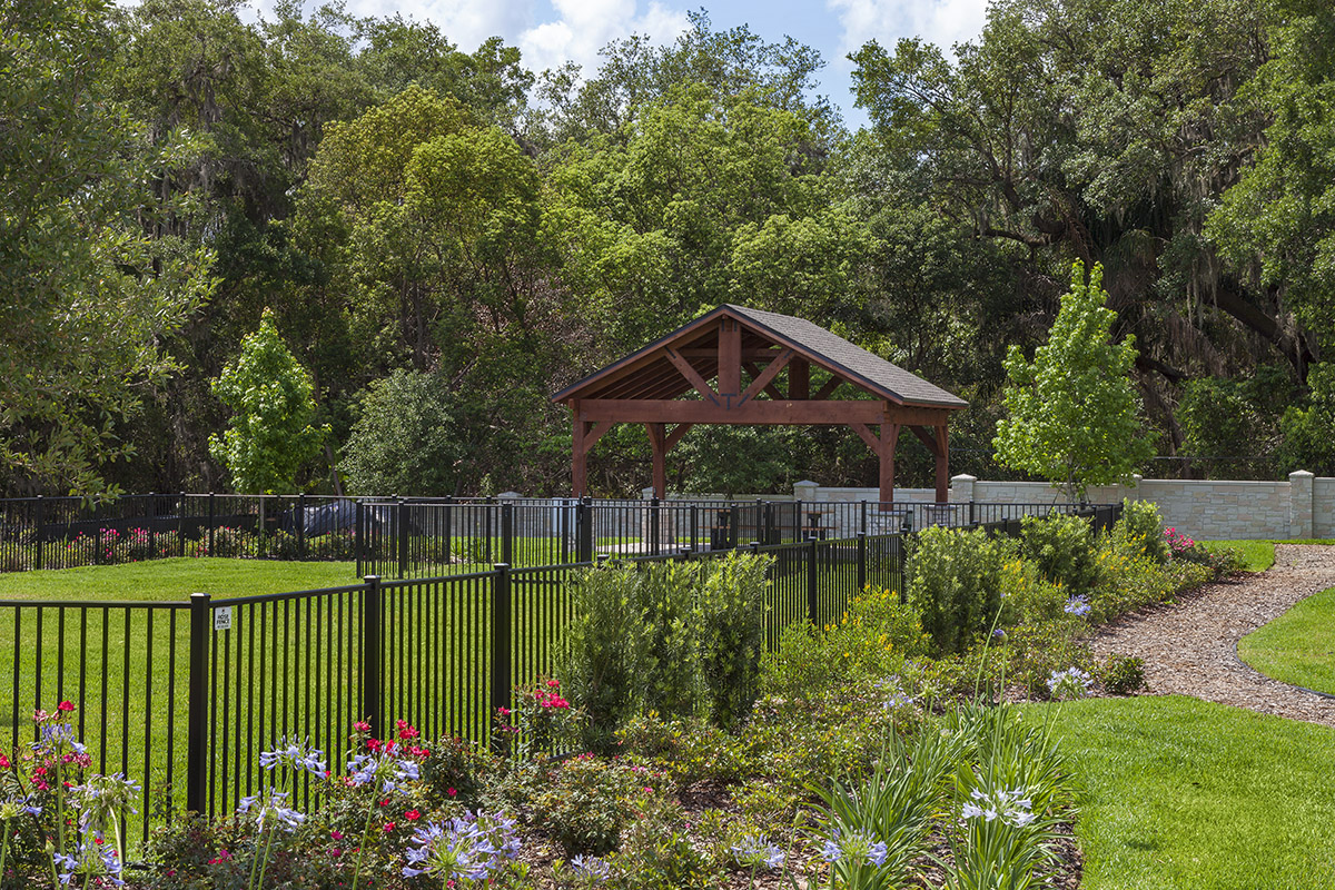 New Homes in Orlando, FL - Creekstone Dog Park