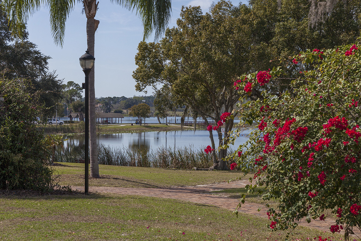 New Homes in Mascotte, FL - The Gardens at Lake Jackson Ridge Nearby Lake David Park in Groveland