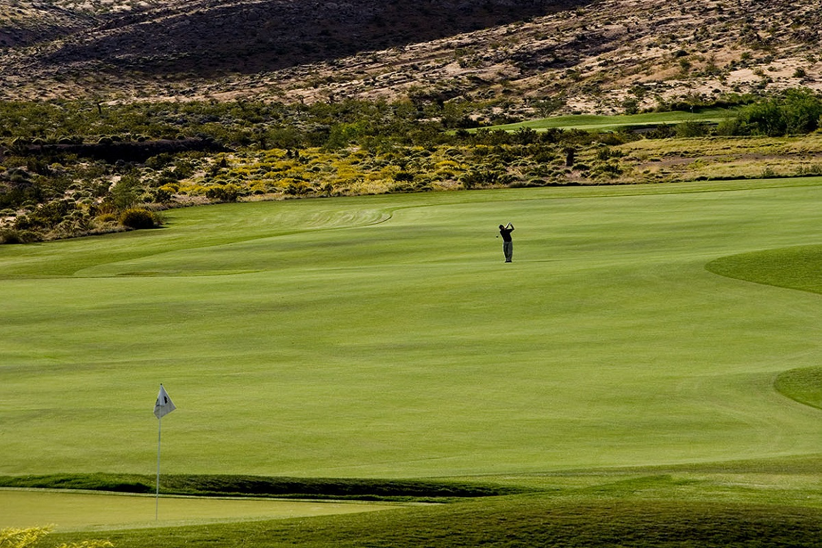 New Homes in Las Vegas, NV - Bristle Vale at Summerlin - Collection I Bears Best Golf Course