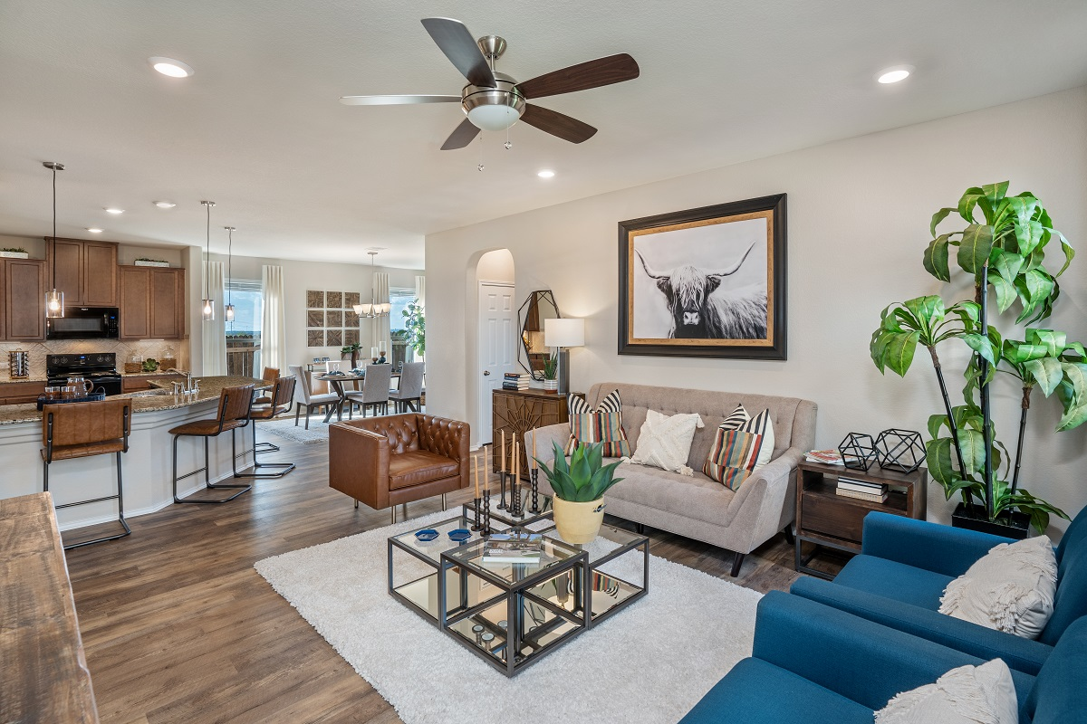 New Homes in Austin, TX - Willow Trace Plan 1647 Great Room