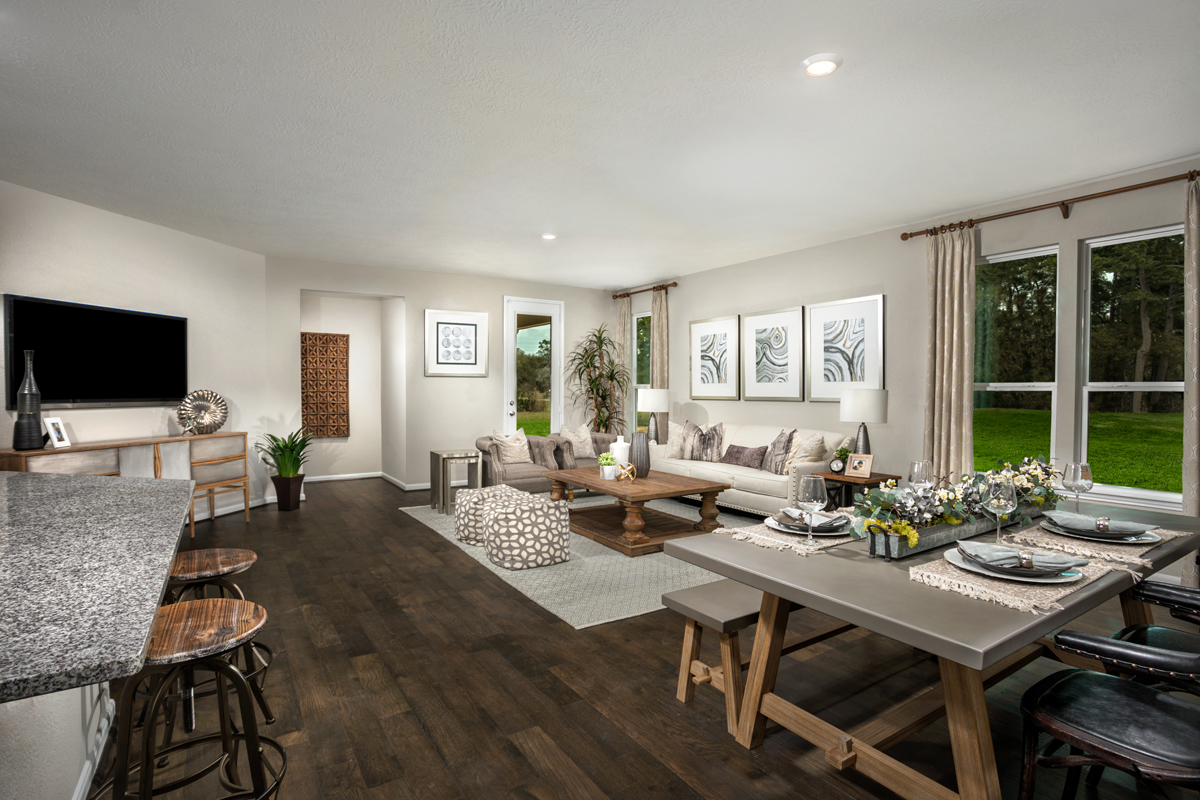 New Homes in Houston, TX - Willow Wood Place Plan 1585 Great Room